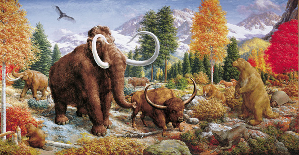 an introduction to the comparison of the age of reptiles and the age of mammals 134 cenozoic era: age of mammals  compare and contrast after students  mammals replaced reptiles as the dominant land animals in the.
