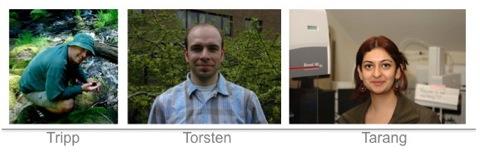 Tripp, Torsten, and Tarang